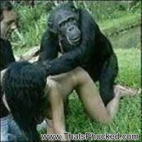 Understood not Teen girl fucking a monkey